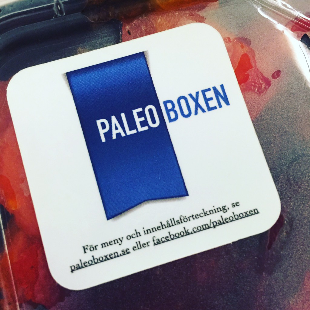 paleoboxen